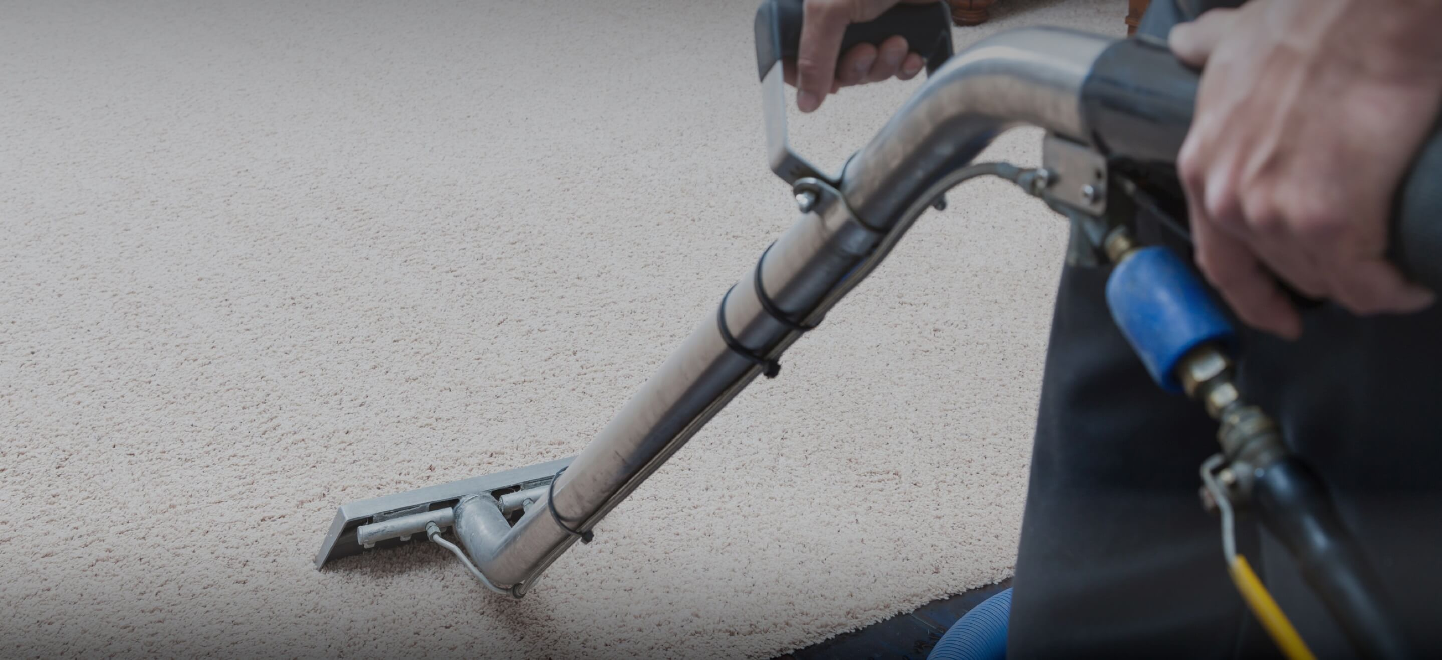carpet cleaning in mesa upholstery cleaning rug cleaning complete carpet cleaning mesa az